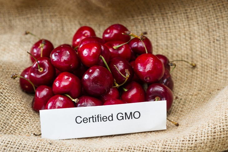 3 Simple Ways to Tell GMO From Organic Foods