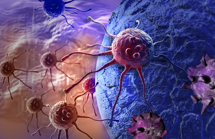 Scientists Find a New Way to Fight Cancer