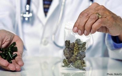Cancer And Cannabis: The Good, The Bad, And The Confusing