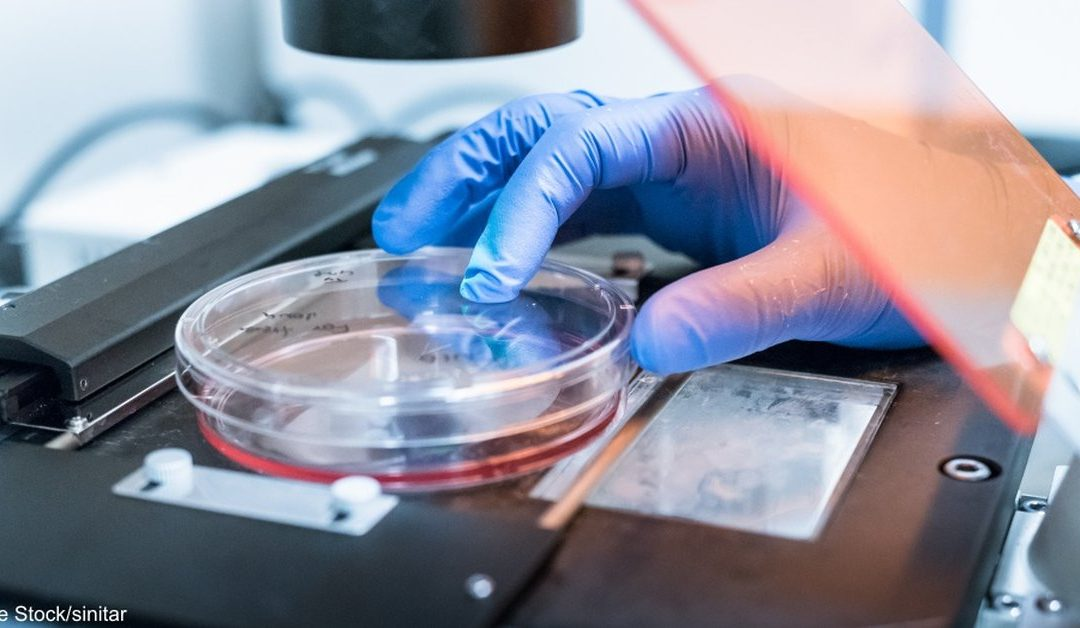 Researchers Have Discovered How To Turn Cancer Cells BACK Into Normal Cells!